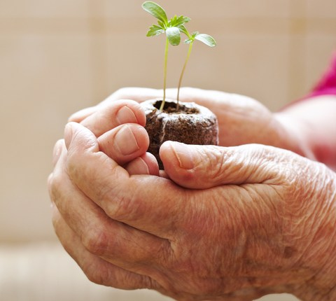 Gardens Support Care