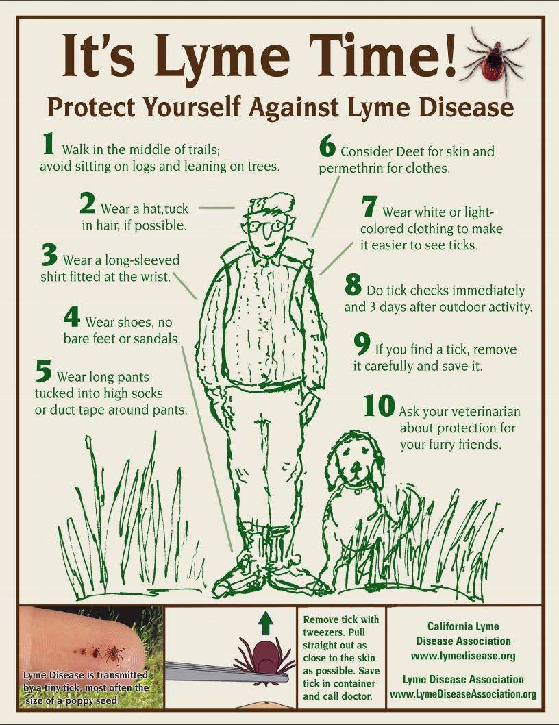 My Lyme Story (Lyme Disease Awareness) | Changing Lanes