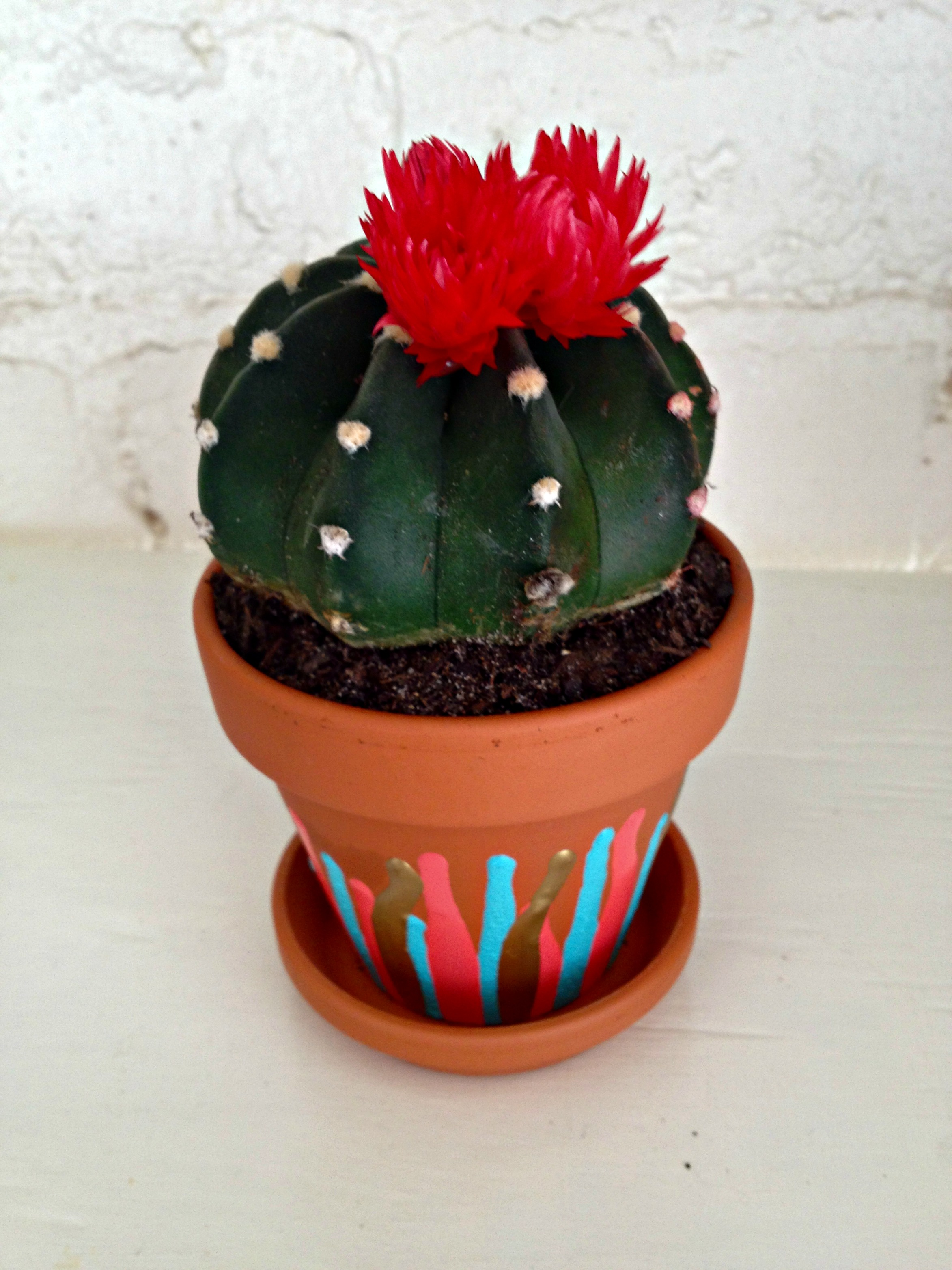 Drip Drop Painted Terra Cotta Pot Changing My Marbles