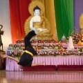 Buddha Birthday Festival, Brisbane.