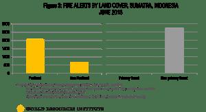 Fire_Land_Cover WRI peat etc