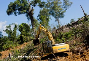 4. A JCB moves earth inside the protected Leuser Ecosystem