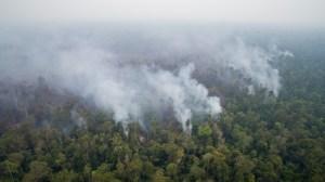 Forest Fires in West Kalimantan