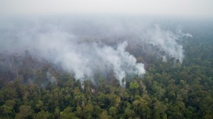 Forest Fires in West Kalimantan