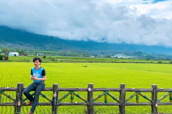 台東農遊行。3-伯朗大道上的池上米