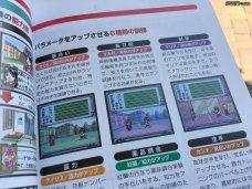 Sakura Wars Games Guide 3