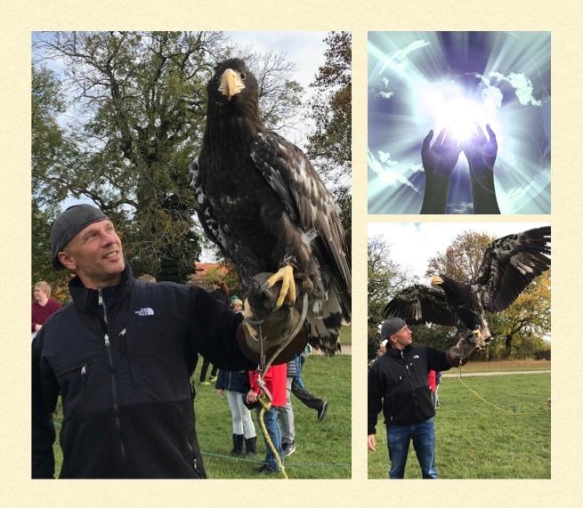 Eagle-Pix.001.jpg