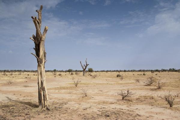Erik on Desertification