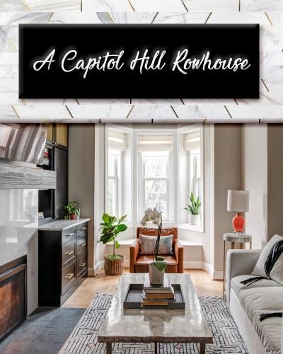dc designer, living room design, capitol hill, washington dc, interior designer