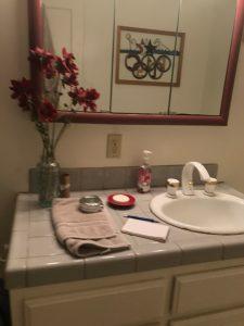 Earthy Bathroom, Bathroom Remodel, remodel, dmv interior designer, bowie maryland, washington dc, before