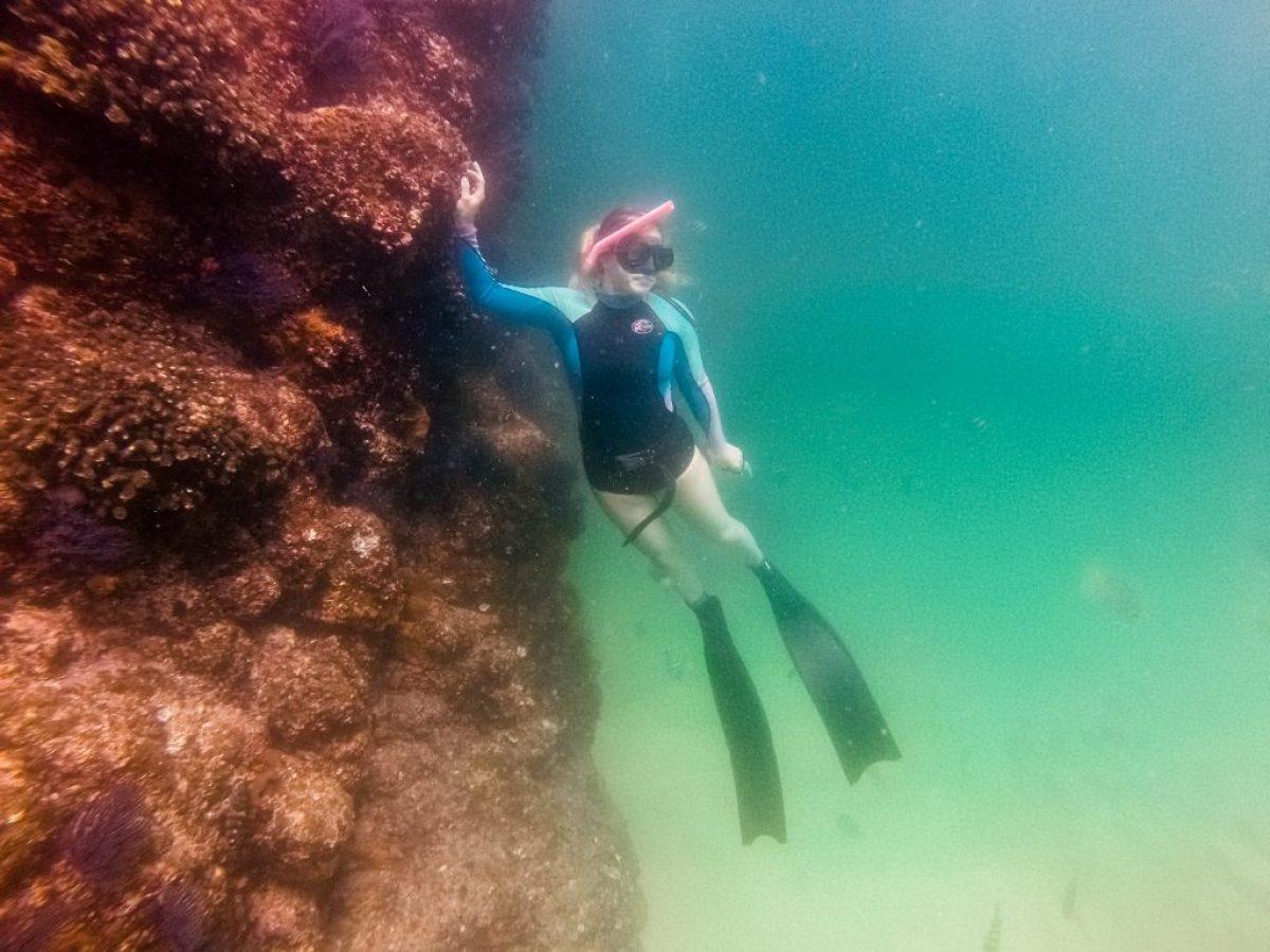 freediving in Cabo San Lucas