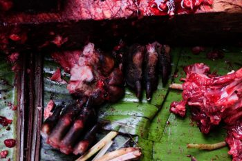 dog meat in Indonesia