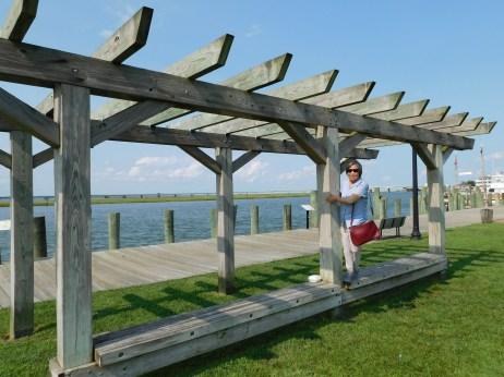 Chincoteague Island 青口提个岛