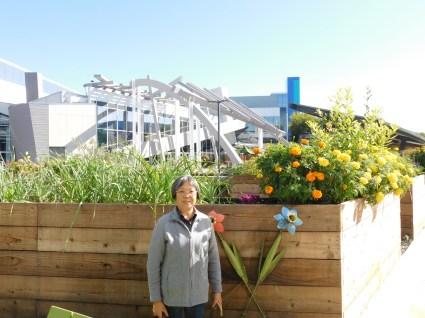 山景城谷歌菜园