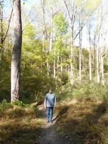 纽瓦克White Clay Creek 州立公园