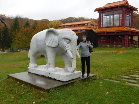 庄严寺吉祥大象