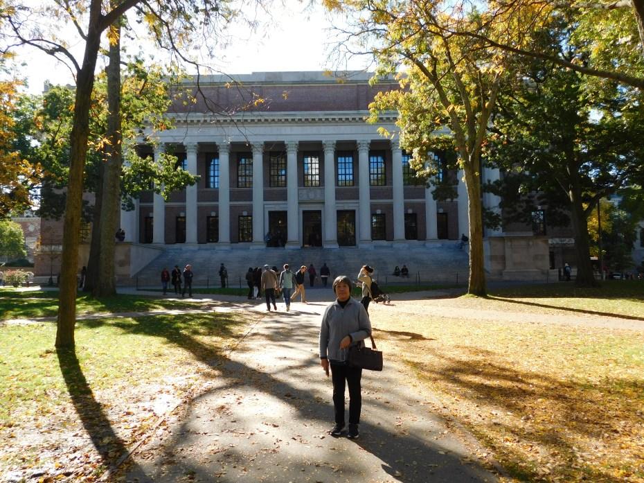 哈佛图书馆