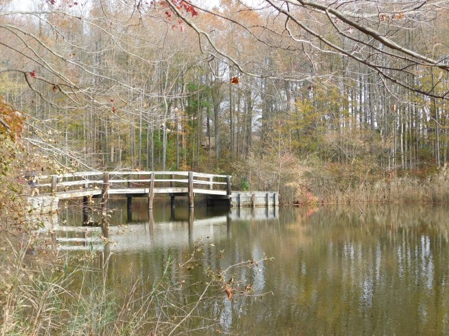 纽瓦克Lums Pond Satae park