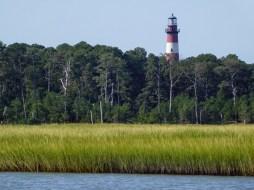 燈塔與Marsh Field
