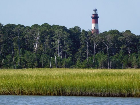 灯塔与Marsh Field