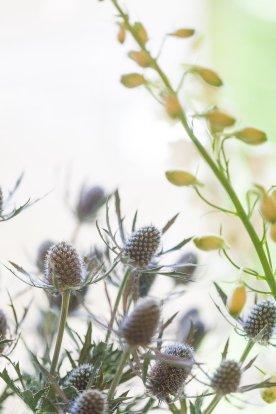 WMP_FlowerCrownWorkshop_9
