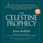 Re-visiting the Celestine Prophecy