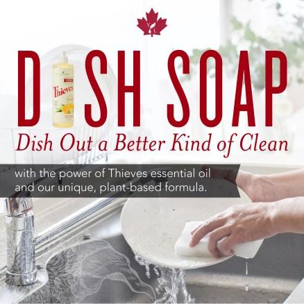 CA_Micrographic_DIsh Soap
