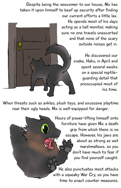 Meet The Cats Nix 2