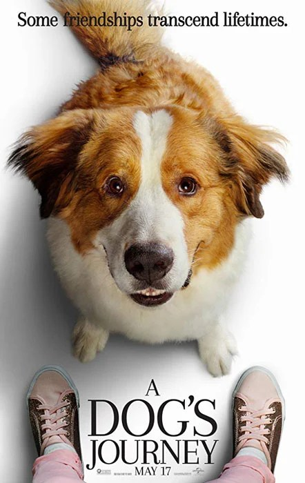 a dog's journey 2019 movie, cast, synopsis, trailer, release date