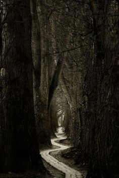 The long, scary path