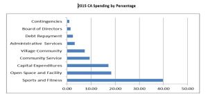 2015 CA Spending by percentage