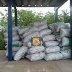 PRF apreende carga ilegal de carvão vegetal em Itaberaba