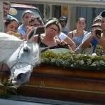 Cavalo comove família de vaqueiro morto ao 'se despedir' do dono