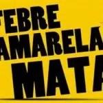 O que sabemos até agora sobre a febre amarela na Bahia