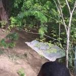Corpo de mulher é encontrado em matagal  próximo ao Brisa da Chapada