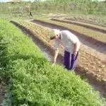Prefeito de Itaberaba assina termo de adesão ao Programa de Promoção de Mercados Rurais