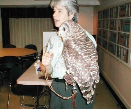 Piedmont Wildlife Center Holds 12th Annual Auction