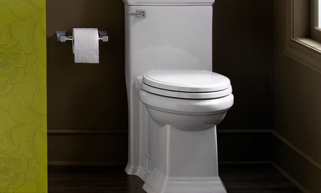 Is The Toilet The Greatest Public Health Invention Ever?