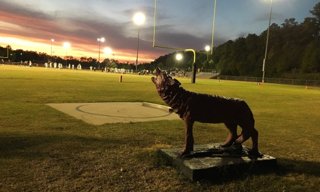 Tigers Put It All Together Topping Red Wolves 27 – 3 On A Beautiful Hillsborough Night