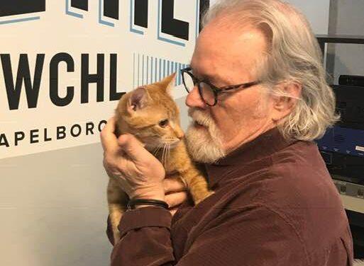 Adopt-A-Pet: Blinkin'