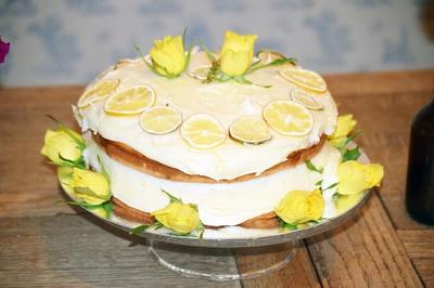 A lush lemon drizzle cake.