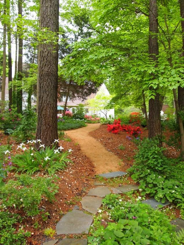 Norwood Garden Woodland Garden