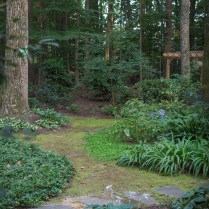 kuehnle-rosinia-garden-vignettes-3_35573370714_o