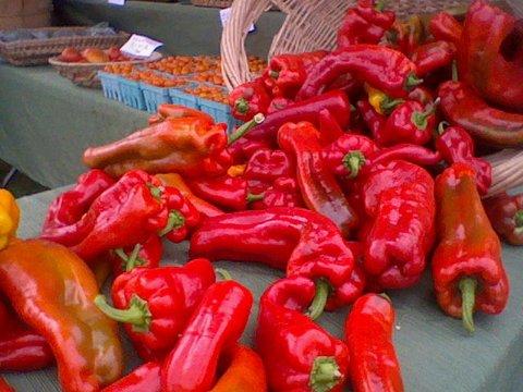 Carrboro NC Farmers Market-001