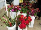 Carrboro NC Farmers Market-0021