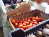 Carrboro NC Farmers Market-004