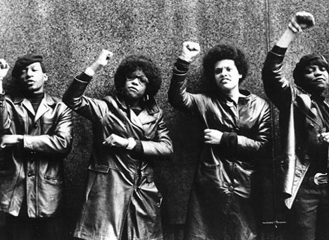 Image result for black panther movement