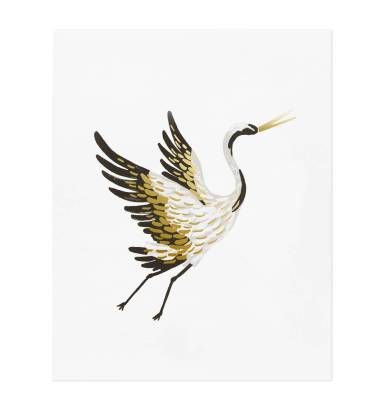 apm083-8x10-crane-01