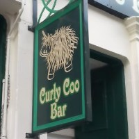 curly-coo