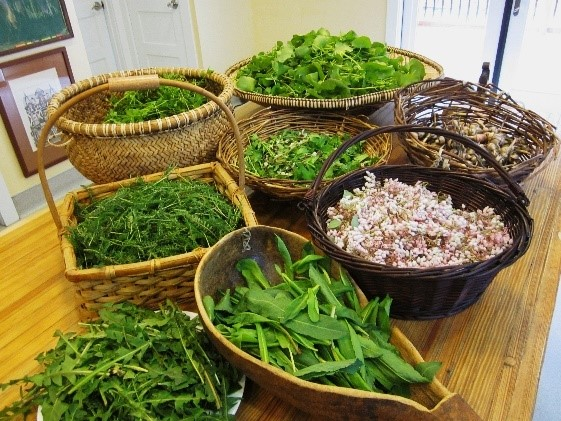 Array of greens and mushrooms in various baskets, cleaned and ready for meal preparation